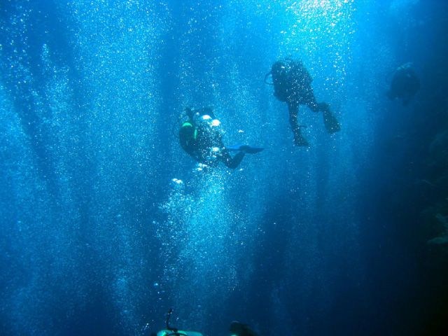 Divers amidst bubbles