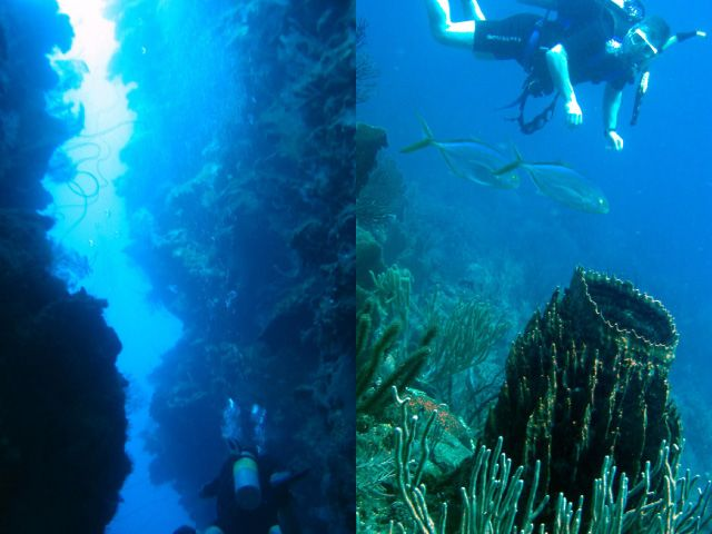 Tall chasm and diver watching fish