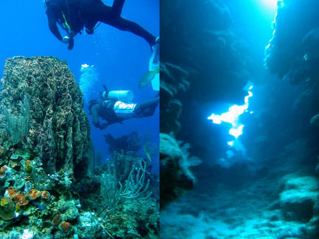 Divers near ocean floor and underwater chasm