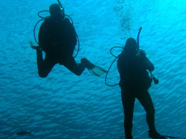 Two divers in the water